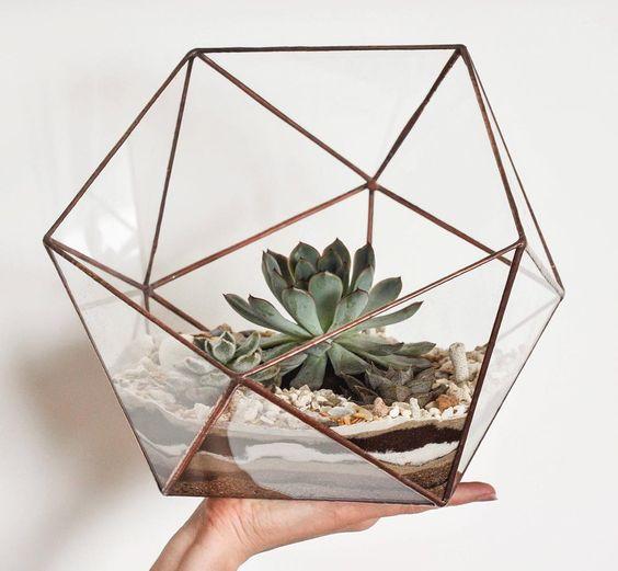 Икосаэдр с растением